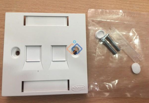 Mặt 2 port hình vuông Wallplate AMP Face plate 1859049-1