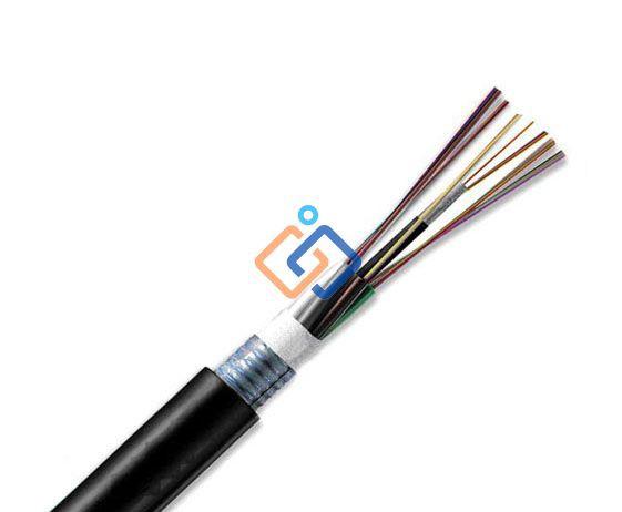 Cáp quang 4FO singlemode LS cable system Chính hãng