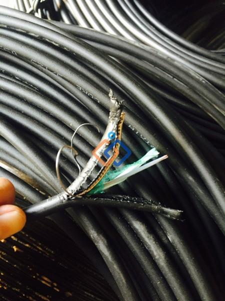 Cáp quang luồn cống kim loại 8 sợi singlemode