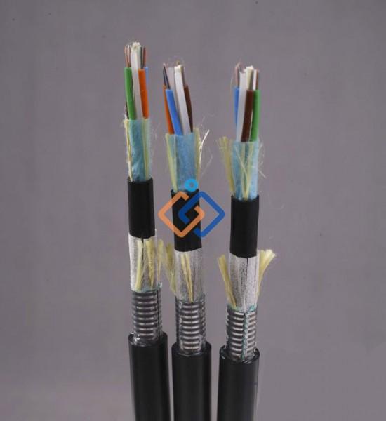 Cáp quang kim loại 12FO